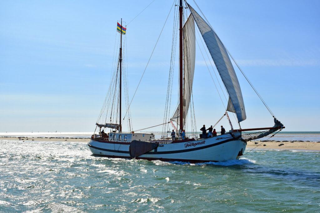 zeehonden zeilschip TerSailing